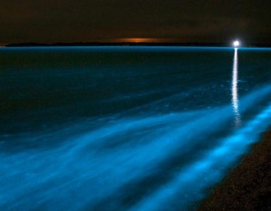 Fosfor Karanlıkta Nasıl Parlar?