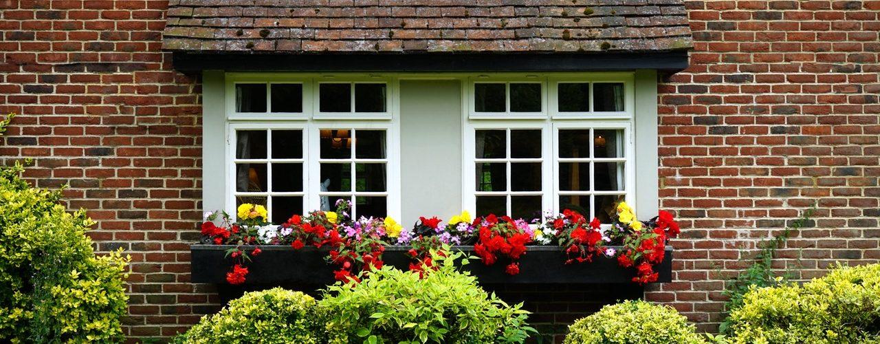 Ev Çiçekleri Bize Nasıl Zarar Verebilirler?
