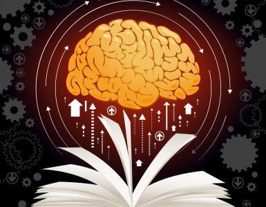 Hızlı Okuma Tekniği Nedir, Nasıl Geliştirilebilir?