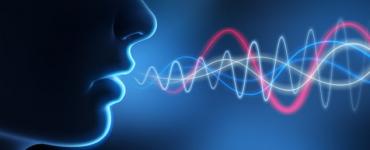 Canlıların Sesleri Neden Farklıdır?