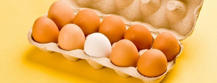 Sarı ve beyaz yumurta arasında bir fark var mı?